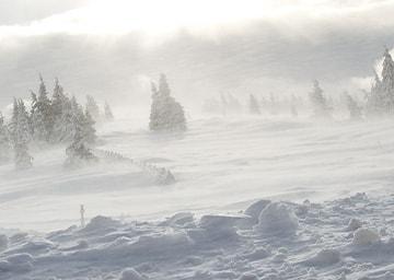 Verwehte Schneelandschaft