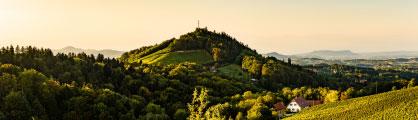 Grüne Hügellandschaft